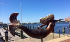 norfolkmermaid