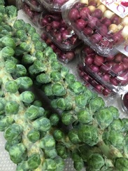 Brussels & Tricolor Pearls